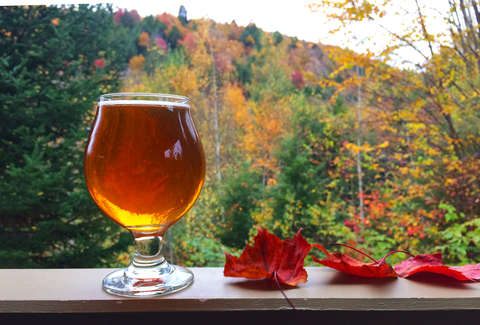 glass of beer and fall foliage