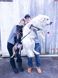 Couple holding their dogs