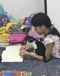 Kitten sitting with little girl while she reads