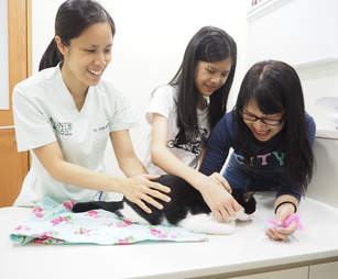 Vet and girls with cat at vet