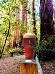 Surreal Brewing Company
