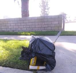 Cardboard box covered in black plastic bag