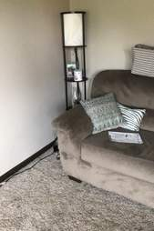 scared dog hides behind couch