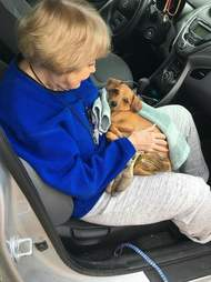 Older woman holding rescued dog in car