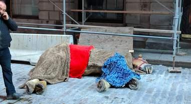 horse collapse canada