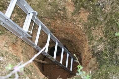 Wallaby fallen down mineshaft in Australia