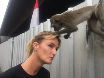 Monkey touching woman's head