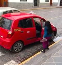 Alpaca catching taxi ride with family in Cusco, Peru