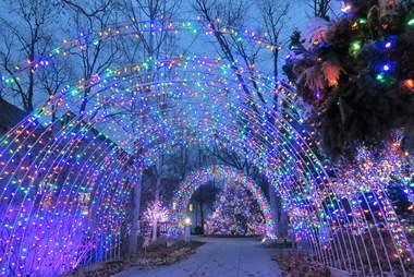 winter lights arboretum