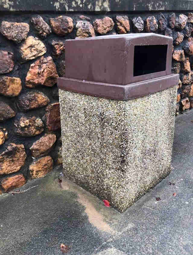 The trash can where Carolina the Chihuahua was found