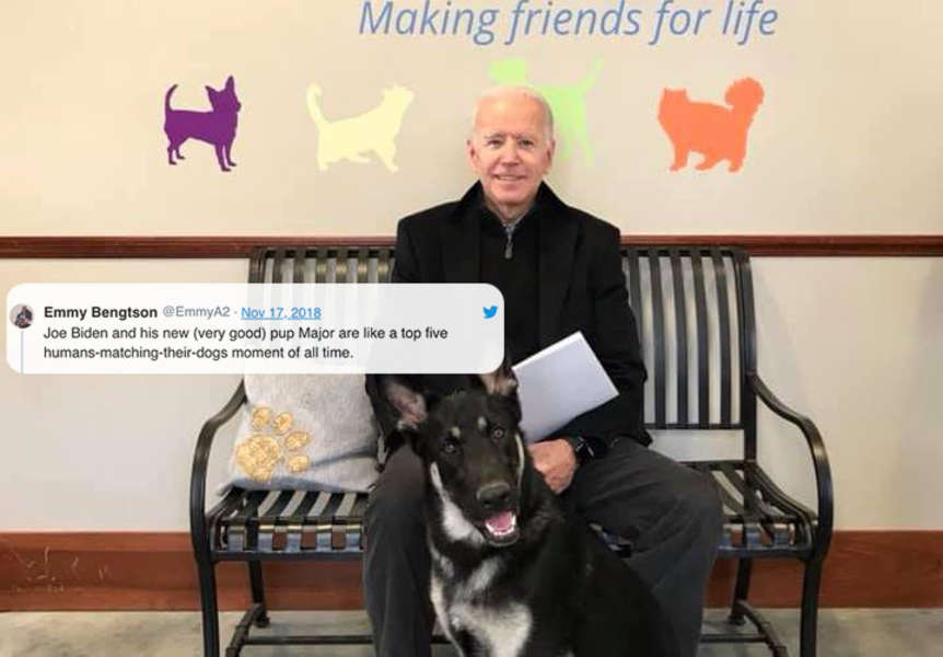Joe Biden Adopted A Rescue Dog Named Major And Twitter Is Freaking Out Thrillist