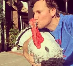 turkey rescue california