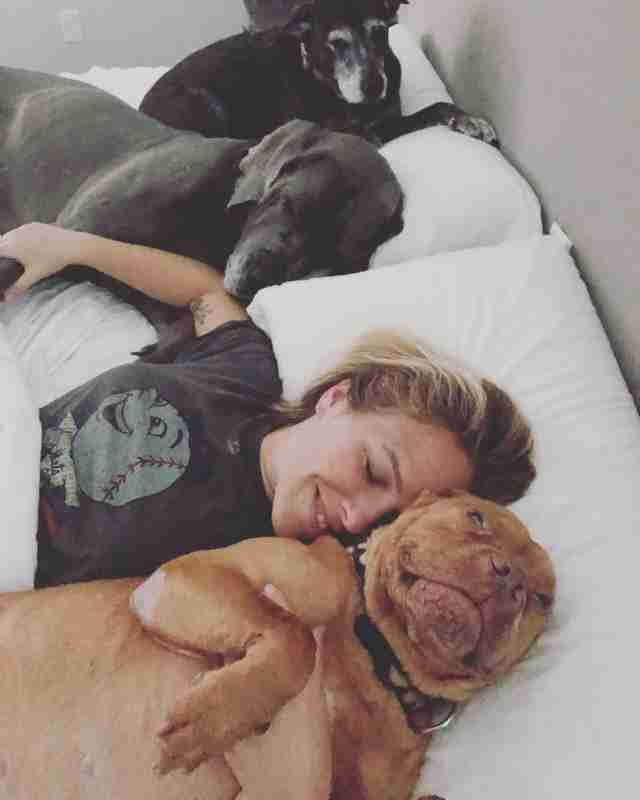 Dogs lying on bed with woman