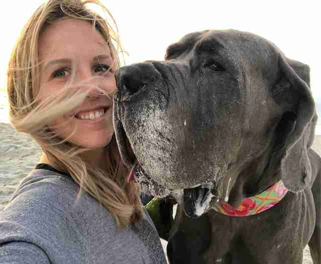 Woman with senior great dane dog