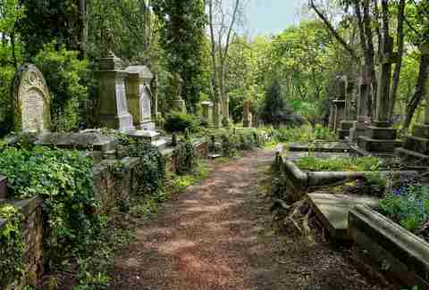 Graves in the East cemetery of Highgate Cemetery