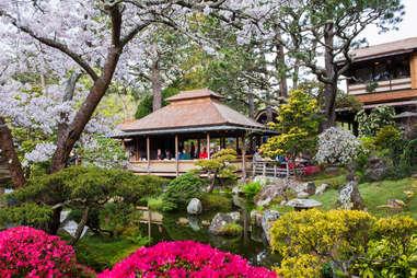The Japanese Tea Garden at Golden Gate park