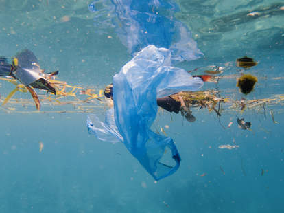 plastic pollution, microplastics