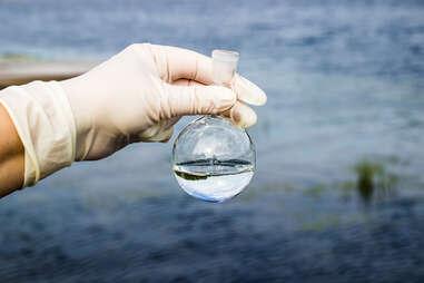 Water samples, plastic pollution, microplastics