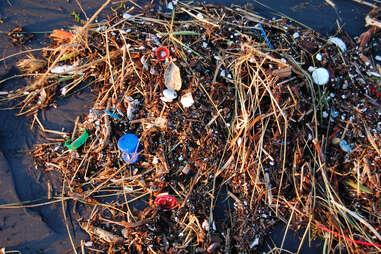 plastic pollution, microplastics, plastic ocean