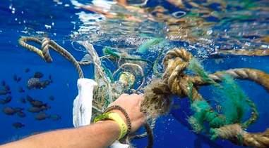 the swim ocean litter