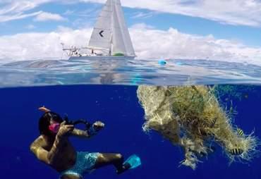 litter the swim ocean