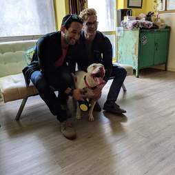 Blu the deaf pit bull gets adopted
