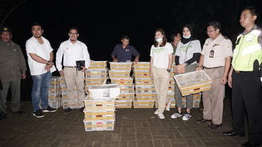 Officials with confiscated birds