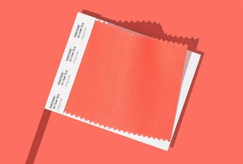 Pantone S 2019 Color Of The Year What Is Living Coral Thrillist