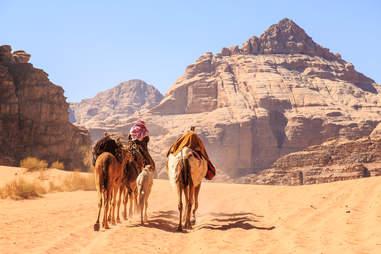 caravane de chameaux Jordanie