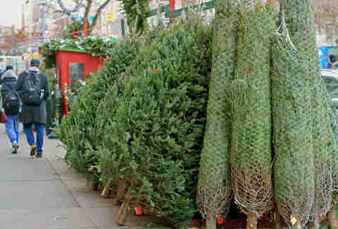 christmas tree shopping midtown nyc