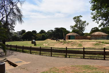 Enclosure at zoo for elephant