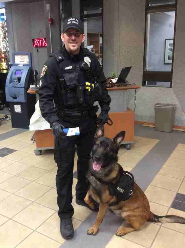 Police dog Jary and his handler Senior Officer Hower