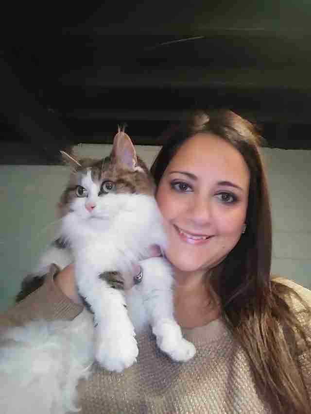 Cat sitting on woman's shoulder