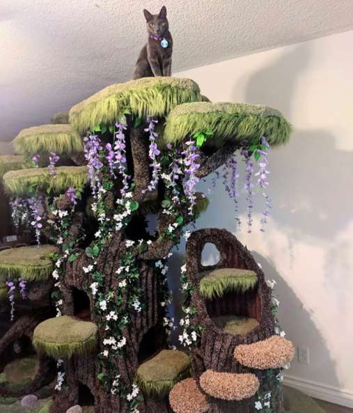Wondrous Family Of Cats Gets The Most Beautiful Cat Tree In The World Download Free Architecture Designs Scobabritishbridgeorg
