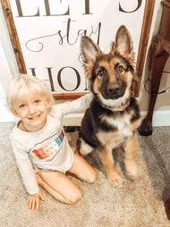 3-year-old Laurel with her best friend, Wren, a German shepherd