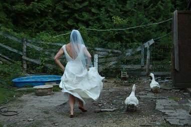 Bride feeding her rescued animals at farm sanctuary in Ontario