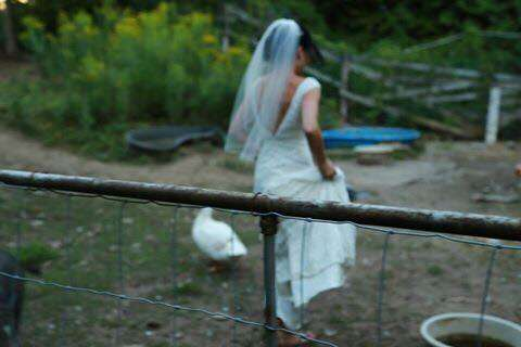 Bride running off to feed rescue animals