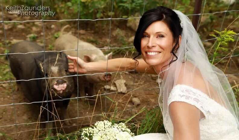 Bride with rescued pigs