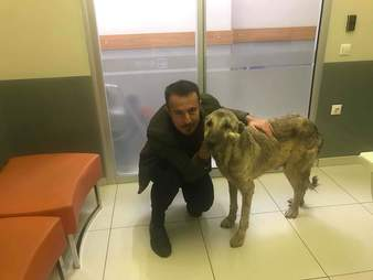 Man posing with rescued dog
