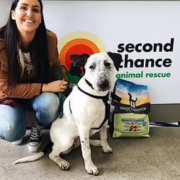 Lola gets adopted from Second Chance Rescue in Australia