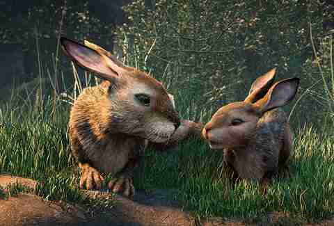 watership down netflix