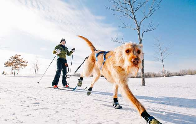 11 Cold-Weather Activities That Will Remind You Why Winter in Minnesota Is Actually the Best