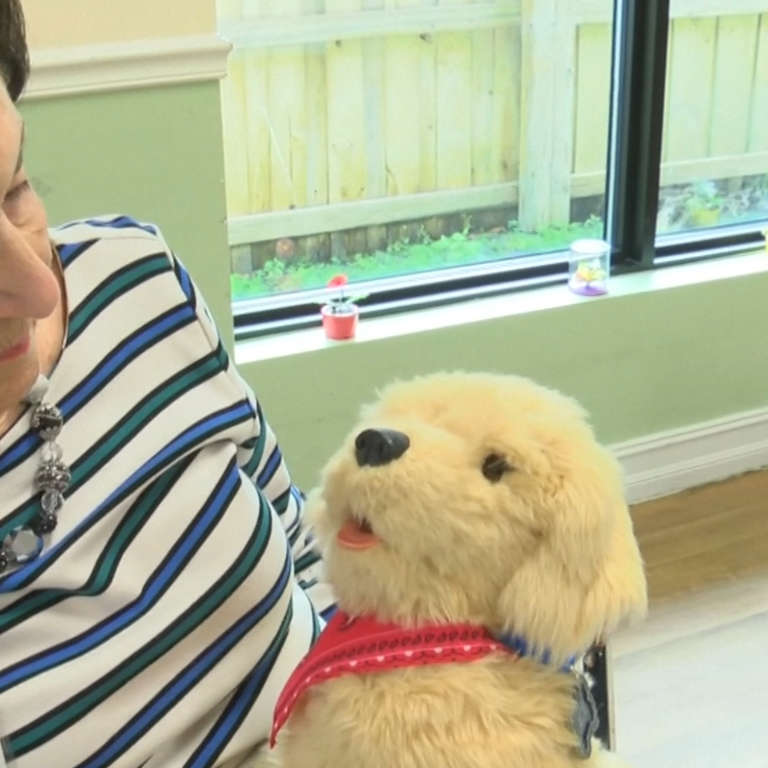 Robotic Pets Are Given to People with Dementia in Social