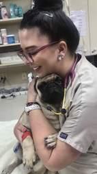 Vet tech Kayleen Campbell holds a sick pug