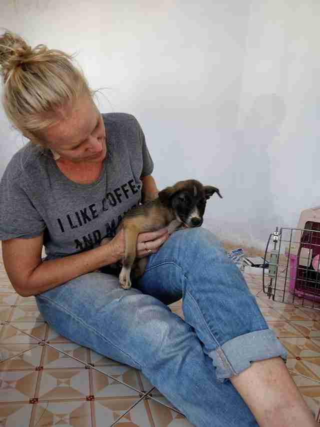 Woman holding rescued puppy