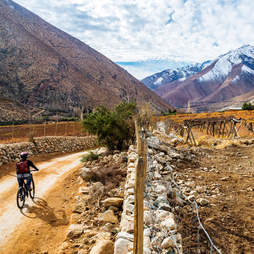 biking Elqui Valley, Chile