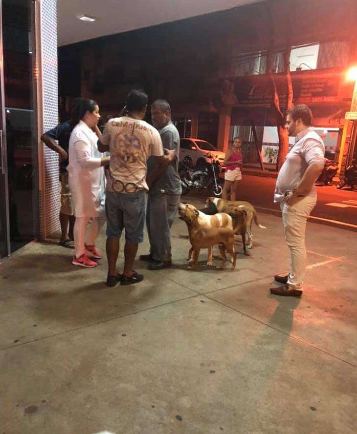 Volunteers care for dogs waiting outside hospital