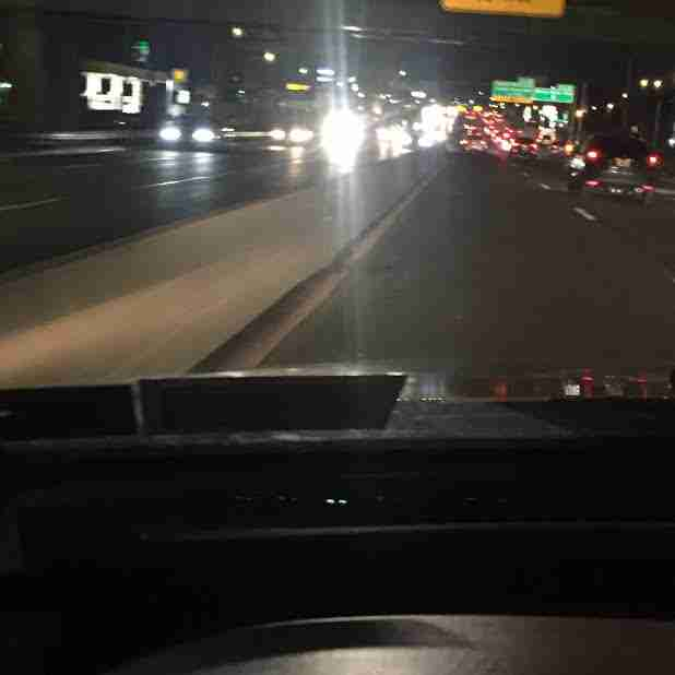 Woman Sees Furry Shape On Busy Bronx Highway — And Realizes It's Alive