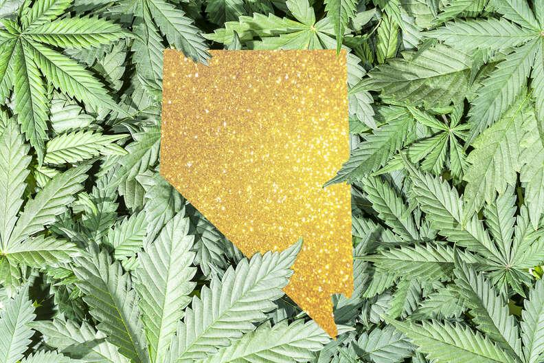 illustration of map of nevada on top of marijuana leaves