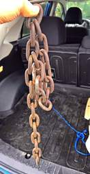 Chain removed from dog's neck